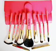 Authentic LUOWAY/Harovi Makeup Brush Sets 10 Portable Model High-Grade Animal Wool Makeup Kit Exquisite Gift Box