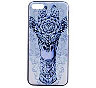 Giraffe Pattern PC Hard Case for iPhone 5C