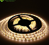5m 300x2835smd led wit / blauw / rood / warm wit / geel / groen / koud wit waterproof led strips 12V
