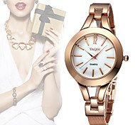 YAQIN® Colorful Shell Round Dial Rose Gold & Silver Mesh Steel Watches Women Fashion Quartz Watch Clock