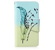 oiseaux de plumes motif PU cas de support de la carte de matériel pour ipod touch 5/6