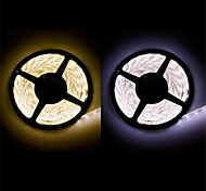 ZDM™ Waterproof  5 m LED 300*3528 SMD DC12V warm white/natural white 20W IP65