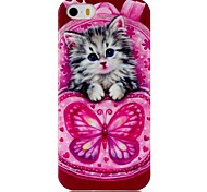 Cat Pattern TPU Phone Case for iPhone 5S/iPhone 5