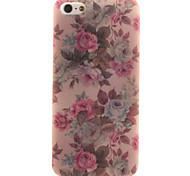 Back Cover IMD Other TPU SoftApple iPhone SE/5s/5