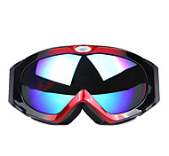 Professional Double Layer Anti Fog Lens Ski Glasses