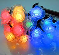 NO 5 M 20 LED Dip Bianco caldo / Bianco / Colori primari Impermeabile W Fili luminosi <5V V