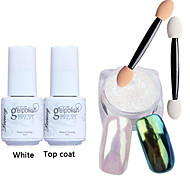 5pcs/set Shinning Mirror Nail Glitter Powder White UV Gel Nail Art Chrome Pigment Kit with Brush