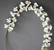 Set of 1 PCS 1 Ast Polyester Orchideen Tisch-Blumen Künstliche Blumen Long 78(inch)