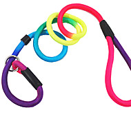 Dog Leash Adjustable/Retractable Solid Multicolor Nylon