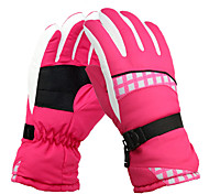 Ski Gloves Winter Gloves Women's Activity/ Sports Gloves Keep Warm Snowproof Ski & Snowboard Ski Gloves Winter
