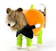 Собака Костюмы Плащи Одежда для собак На каждый день Английский Радужный