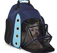 Tragbare Tasche für die Durchführung der Tasche