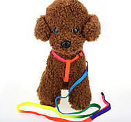 Comfort Soft Breathable Cat Dog Harness Pet Nylon Vest Traction Rope For Dog Collar Colorful Chest Strap Pet Rainbow Chain