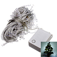 10M 6W 100-LED Cool White LED Light Strip voor Kerstmis Halloween Festival Decoratie (110V)