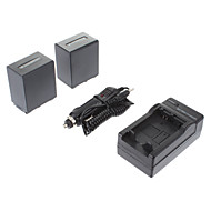 ismartdigi-Sony NP-FV100 (2st) 3900mAh, 7.2V Batteri + Billaddare för SONY CX700E/PJ50E/30E/10E