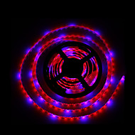 5m smd5050 4red1blue 300LED IP65 hydrocultuur systemen geleid plant te kweken licht waterproof led (12V)