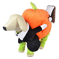 Dog Costume / Outfits Orange Dog Clothes Winter / Spring/Fall Pumpkin Cute / Cosplay / Halloween