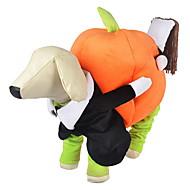 Köpekler Kostümler / Kıyafetler Turuncu Köpek Giyimi Kış / İlkbahar/Kış Balkabağı Sevimli / Cosplay / Cadılar Bayramı