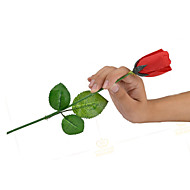 Magic Prop Leisure Hobby Roses Plastic Red 8 to 13 Years 14 Years & Up