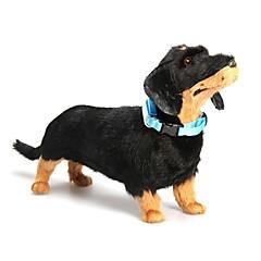Verstellbares  LED-Licht Hundehalsband (25 - 35cm)