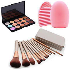 12st cosmetische make-up tool oogschaduw poeder blush foundation brush set box + 15colors concealer + 1pcs borstel schoonmaken tool