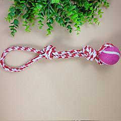 개 / 고양이 장난감 인터렉티브 Rope 직물 로즈