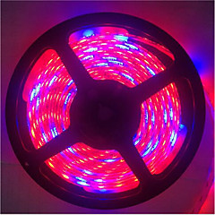 5m 5red1blue 300LED SMD5050 IP65 sistemi idroponici pianta principale coltivano la luce impermeabile led (DC12V)