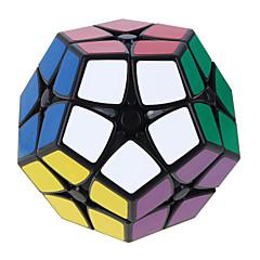 Rubiks kubus Shengshou Soepele snelheid kubus 2*2*2 Megaminx Snelheid professioneel niveau Magische kubussen