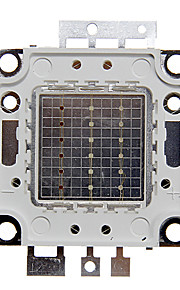 ZDM ™ 20w rgb lys integrert LED-modul (red: 13-15v grønn: 18-20v, blå: 18-20v)