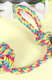 Cães Brinquedos Brinquedos para roer Durável Téxtil Arco-Íris