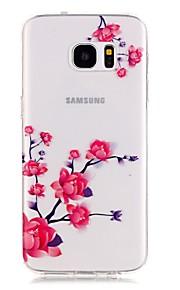 TPU de alta pureza translúcido céu aberto da flor de ameixa padrão de caixa do telefone macio para Galaxy S5 / S6 / S6 edge / S7 / S7