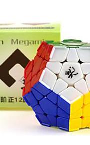 Brinquedos / apaziguadores do stress / Cubos Mágicos MegaMinx / Toy magic Cube velocidade lisa Magic Cube quebra-cabeça Arco-Íris Plástico