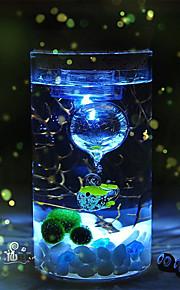 Mini Aquariums Ornament Glass