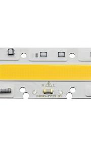 Led lamp lamp cob lichtbron 30w 220v input smart ic fit chip voor diy led floodlight wit / warm (1 stuk)