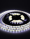 waterdicht 5m 300 * 53.528 smd wit / warm wit licht led strip lamp (12V)