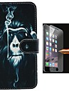 Orangutans Design PU Leather Full Body Case with Explosion-Proof Glass Film for iPhone 6 Plus