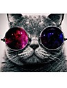 Cat with Cosmos Glasses Design Full-Body Protective Plastic Case for 11-inch/13-inch New Mac Book Air