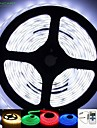 2M 50W 5630x120LEDS White/Blue/Red/Warm White/Yellow/Green/Cold White IP68 LED Light Strips Remote Control 100-240V