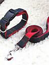 Cat / Dog Collar / Leash / Slip Lead Adjustable/Retractable Red / Black / Blue Nylon