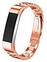 Preta / Rose / Dourada / Prateada Aco Inoxidavel Pulseira Esportiva Para Fitbit Assistir 10mm