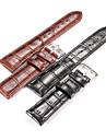 femmes / Hommes grain alligator veritable montre en cuir accessoires de bande  20mm montre 22mm