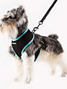 Cat / Dog Harness Adjustable/Retractable / Breathable Solid Green / Blue / Orange / Rose Nylon / Mesh
