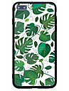 For Pattern Case Back Cover Case Tree Hard Acrylic for  iPhone 7 Plus  7  6s Plus 6 Plus  6s 6  SE 5s 5