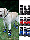 Cat Dog Shoes & Boots Waterproof Color Block Black Ruby Blue