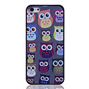 Lureme Colored Owl Pattern Back Case for iPhone 5/5S